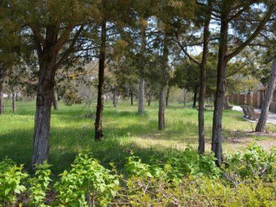 Прилегающая территория рядом с хостелом Малибу в